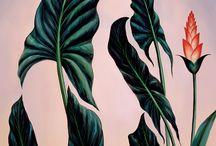 pinturas metamorfosis