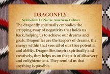 Dragonfly.. Love love / by Stephanie Massey Smith
