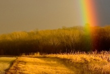 """No rainbow without rain"""