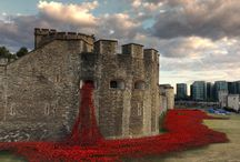 Tower Poppies / Blood Swept Lands and Seas Of Red