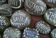 Kavicsok / Stones