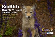 BioBlitz / by Golden Gate National Recreation Area
