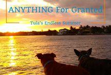 Happiness and Inspiration / Live a balanced life. Tula's Endless Summer.