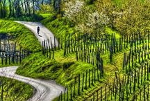 Photo In Photo - Travel in Slovenia