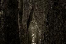 strašidelná stezka
