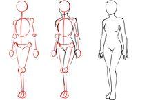 ¤[Anatomía]¤
