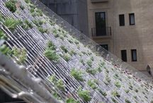 arch- fachadas vegetales