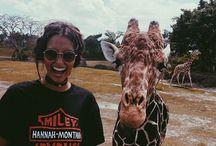 Animals ✨❤