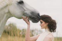 Photography with horses