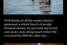 Amazing acts of kindness