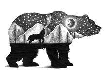 Karhu ja susi