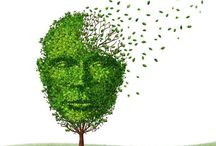 Alzheimers Disease And Nutrition A Possible Link?