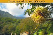 Reisen - Schweiz / Inspiration rund um Reisen und Urlaub in der Schweiz: Reiseziele, Ausflugstipps, Sightseeing, Hotels, Restaurants ... #reisen, #travel, #urlaub, #schweiz, #switzerland