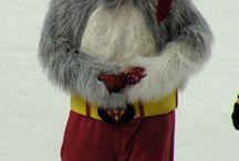 NHL Mascots