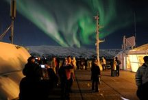 Hurtigruten Experiences / Create a more memorable experience with our excursions - we'll take you closer to the breathtaking Norwegian coastline, Midnight Sun, and Northern Lights.