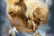 Native American images / by Karen Brown