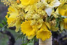Vicki~ 1st April / Wedding Floral Design Board