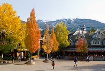 Picture Perfect Whistler / The only thing I love more than my hometown is showing and telling people why I love it and helping them fall in love with it too. A picture says a thousands words!