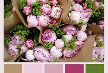 Color Inspiration / Inspiring color combinations! / by Gia Milazzo Smith / Designs By Gia Interior Design