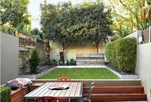 Backyard & ....YARD