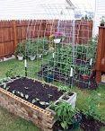 2014 Garden expansion ideas