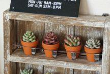 多肉粘土 / clay craft succulents