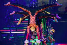 Salto Natale Christmas Circus Zurich / Salto Natale Christmas Circus Zurich Photos @ Geoff Pegler