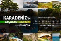 Giresun'un Yaşatan Tonları #giresunblog / Karadeniz'in uzun ve huzurlu yaşatan bütün tonlarını bir araya getirdik. Nerde olursanız olun Giresun'un güzelliklerine tek bir tıkla ulaşabileceksiniz http://kesfet.giresunblog.com