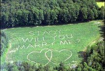 Wedding Proposals