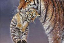 beautyful wild one
