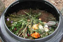 GARDEN-OLOGY  /  Gardening, seeds,storage