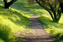 Wandern / Natur