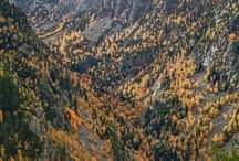 Andorra (Principality of Andorra) / Andorra is a landlocked microstate in Southwestern Europe, located in the eastern Pyrenees mountains and bordered by Spain and France. / by Jeannine Mantooth