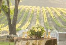 Vineyard + Olive Estate Events