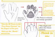 Furry draw
