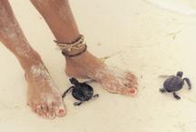 Still beach girl at heart ..