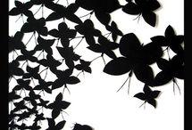 бабочки на черном