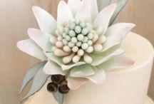 Gum paste Australian native flowers