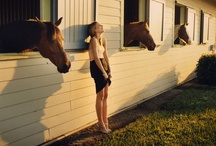 Stable Stables / by Martha Lane