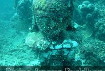 Diving / Underwater World