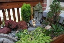 backyard ideas / by Nicole McAleer
