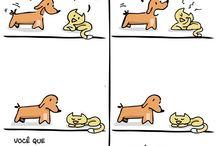 Coisa de Cão e Gato