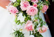 Rosa och vita Rosor