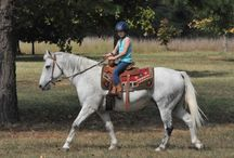 Texas Horse Trails and Parks