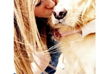 luv dogs