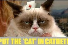 Grumpy cat and Phteven