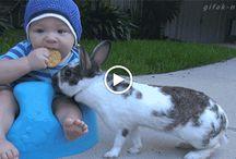 Baby und Kaninchen