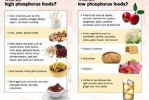 Phosphorus food / Dogs