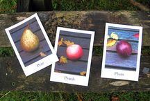 Flash cards / coś