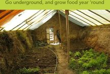 Growing Food / by Joan Stoltman